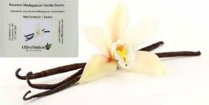 Premium Madagascar Vanilla Beans - 7 beans JR Mushrooms brand