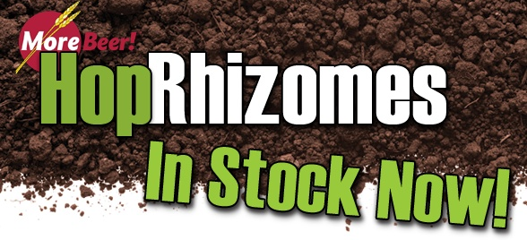 Hop Rhizomes In Stock And Shipping At Morebeer The