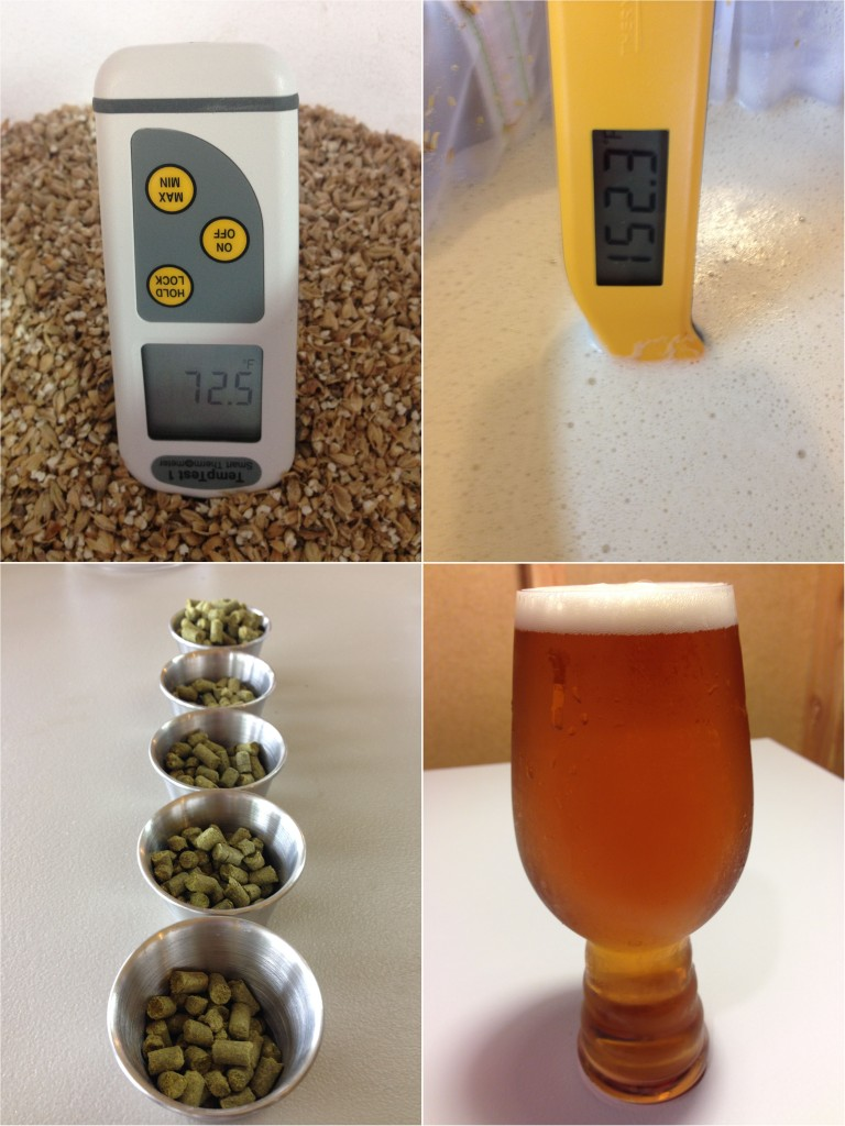 "Brewing ""1 Hour"" IPA - from grain to glass"
