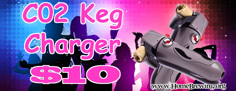Homebrew CO2 Keg Charger