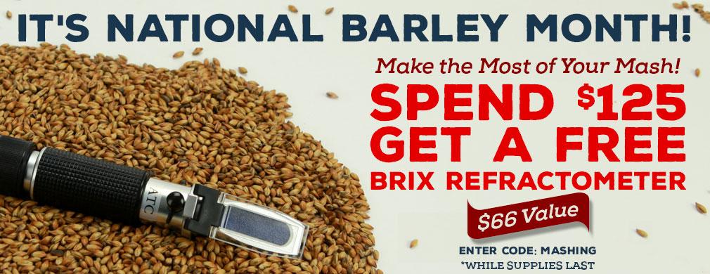 0216-nb-freebrix-spend125-slide