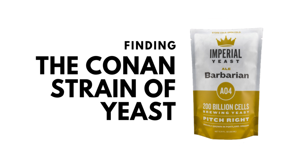conan homebrew yeast