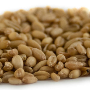810-29_rahr_unmalted_wheat