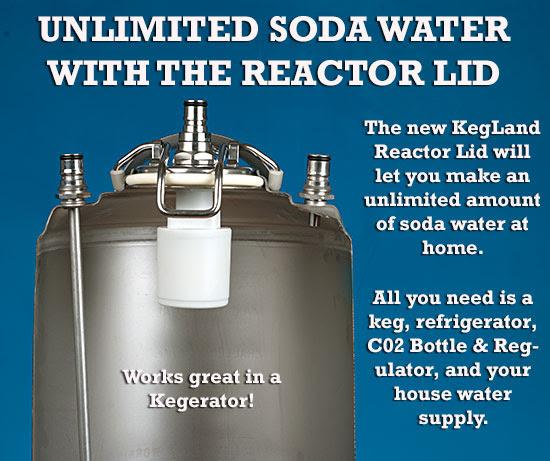 Carbonator Keg Reactor Lid