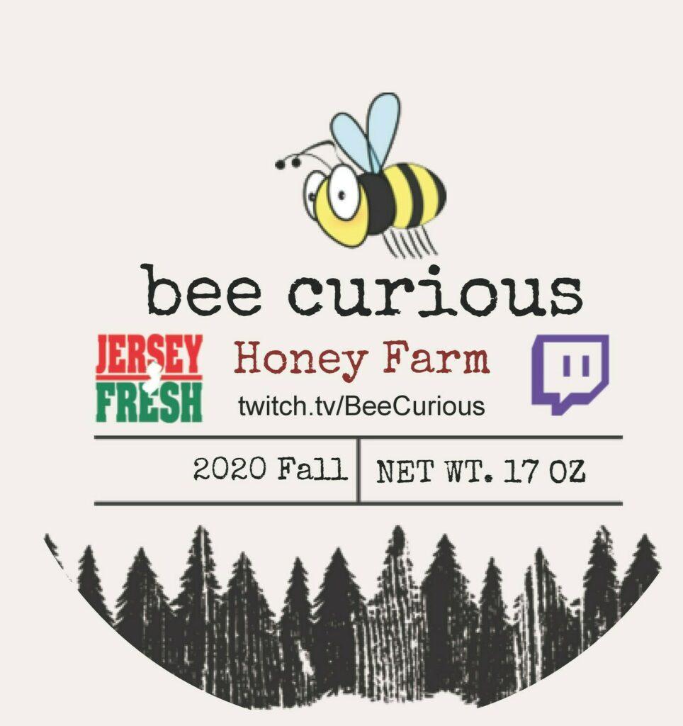 Bee Curious Wildflower Honey (2 lbs)