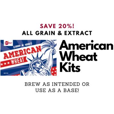 morebeer beer kit deal