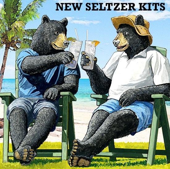 william's brewing hard seltzer kits
