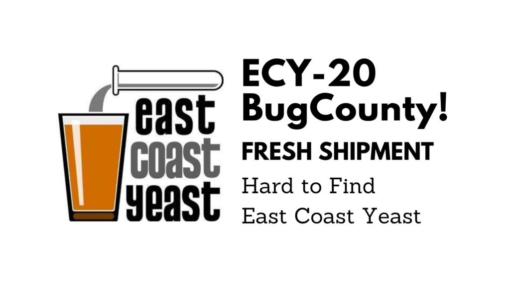 ECY20 BugCounty